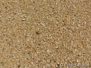 Der Strand ist nicht sandig, sonder kugelig