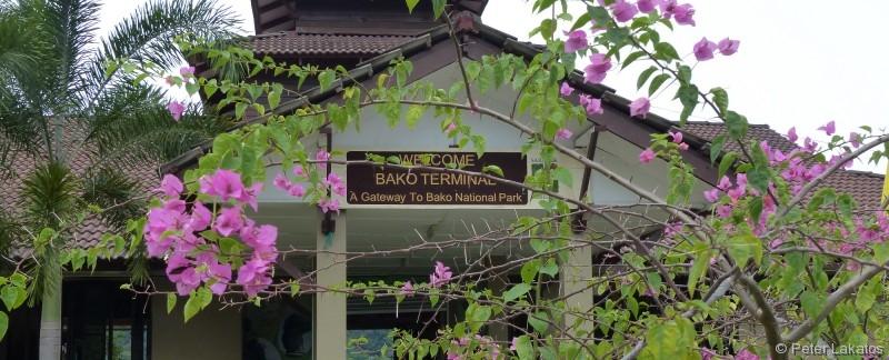 Eingang zum Bako Nationalpark