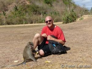 Zwei Affen unter sich