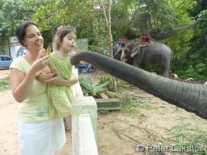 Oooh kleines Elefantenbaby