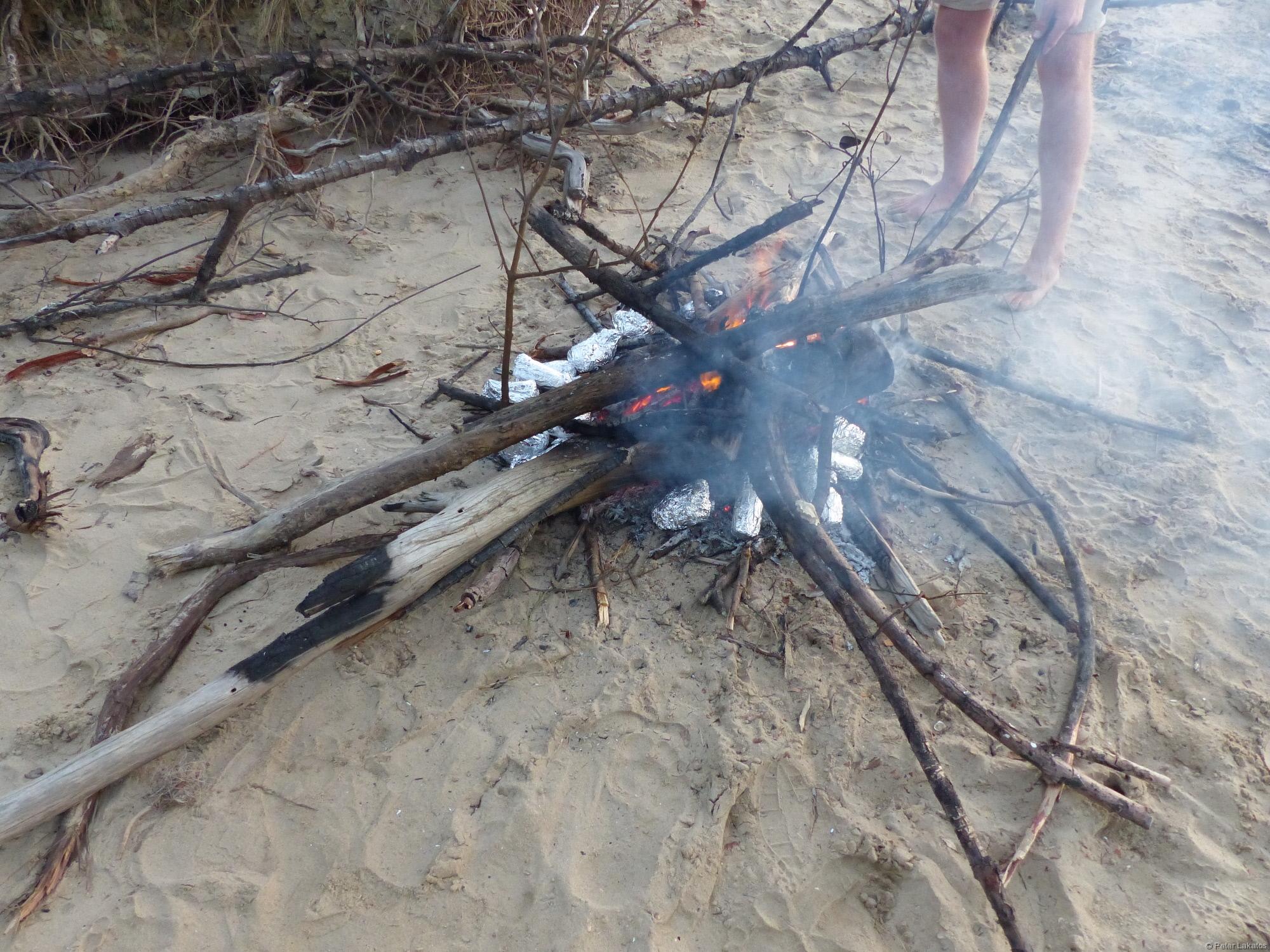 Bush BBQ Feuer