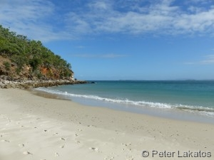 Monkey Beach GKI