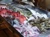 salat-gibts-nur-mit-fisch