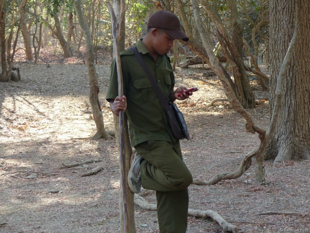Die Wildtierführer im Komodo-Nationalpark in Indonesien haben vorab nur die Kameragebühr kassiert.