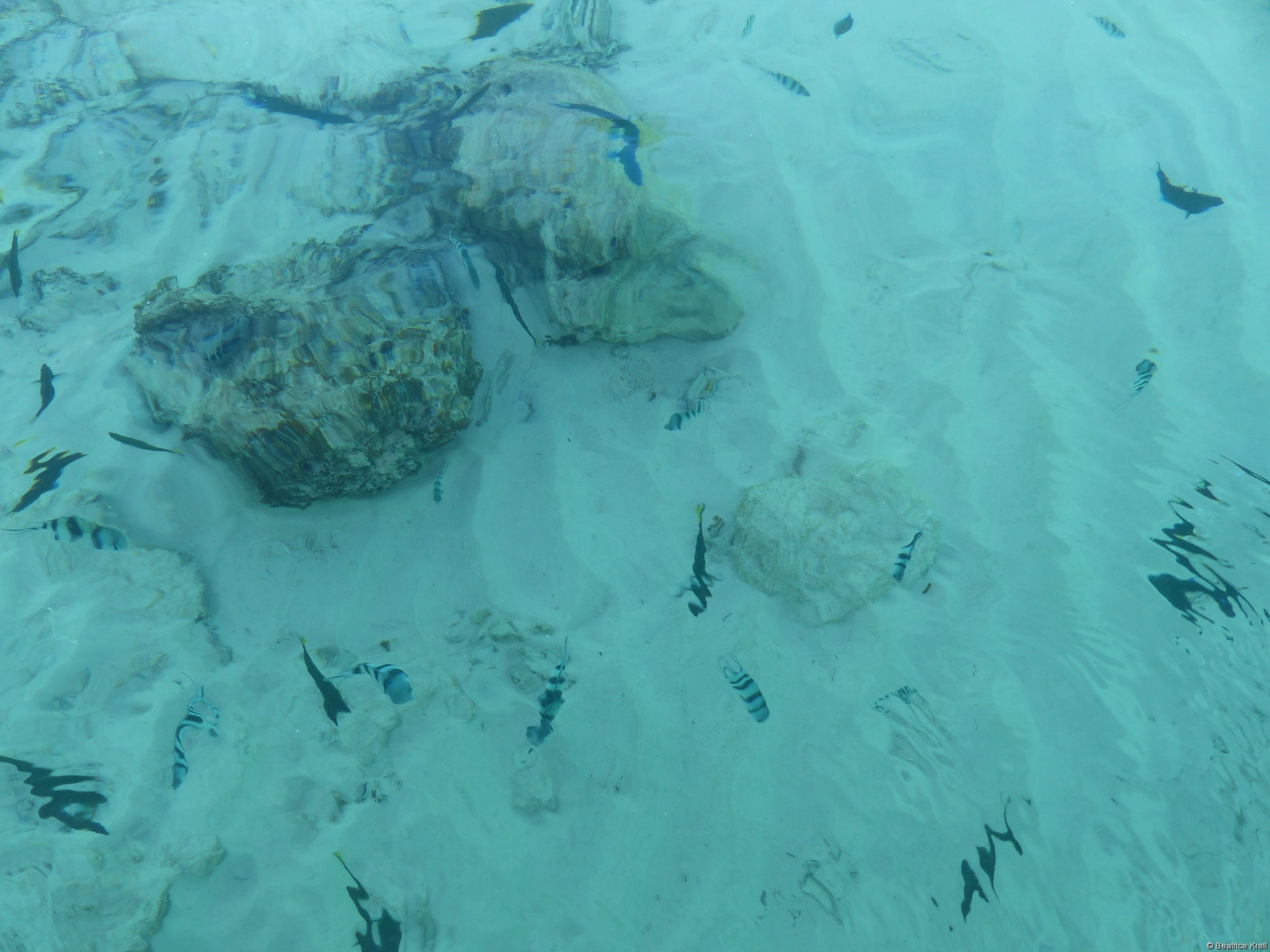... und glasklares Wasser machen diesen Ort einfach magisch. (Unterwasserbilder gibt es unter: http://www.mplx.de/Blog)