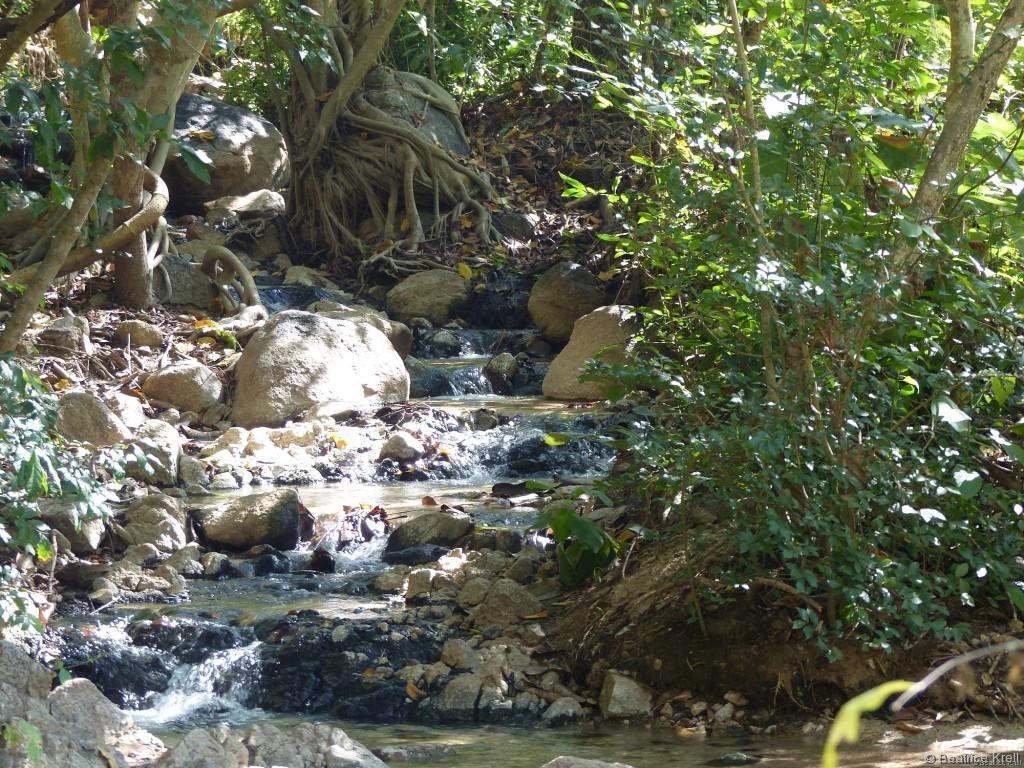 Wenn man die Quelle runter wandert, kommen zuerst diese kleinen Becken.