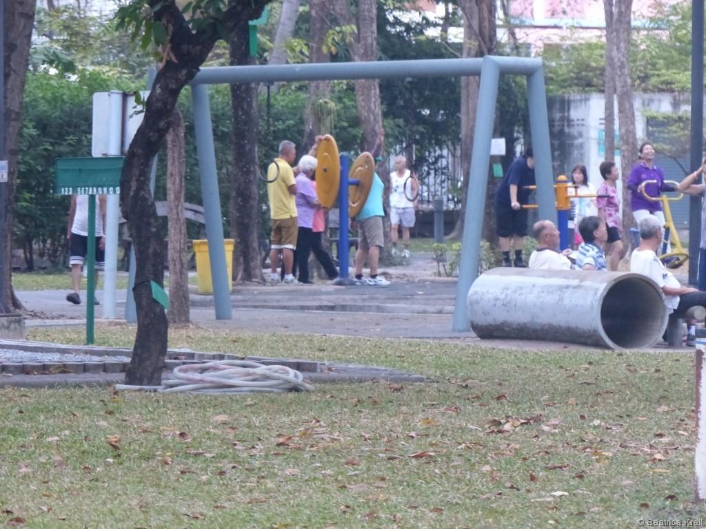 Andere nutzen lieber die Fitnessgeräte im Park.