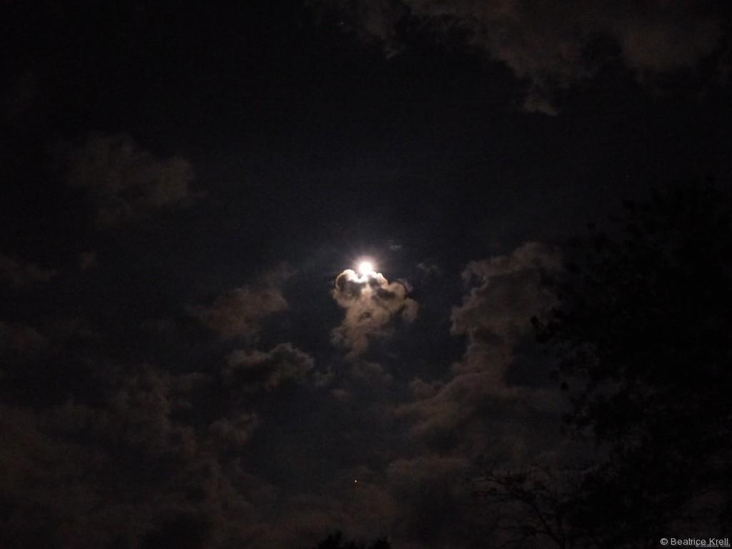 Der Mond und die Feuerwerke trugen ebenfalls dazu bei.