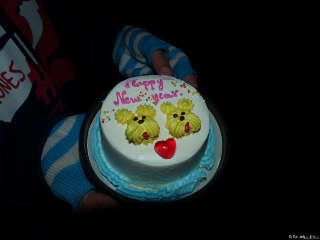 Der kleine Kuchen hat die erste Stunde des neuen Jahres nicht überlebt.