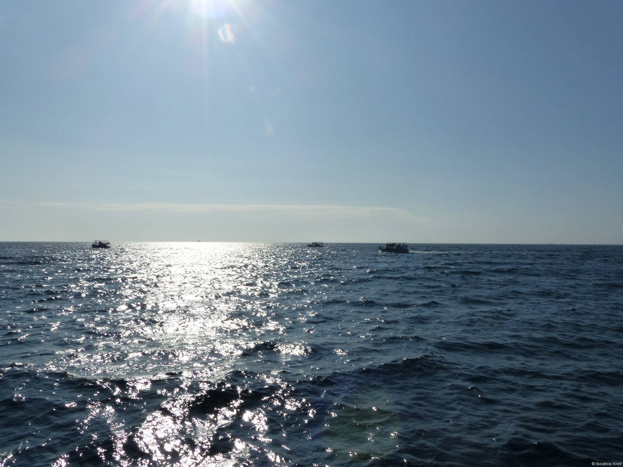 Noch ist weit und breit kein Wal zu sehen.