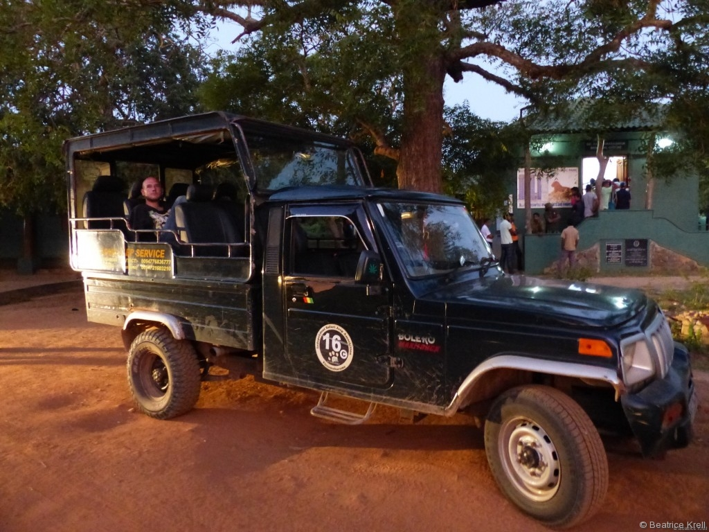 Safari-Jeep