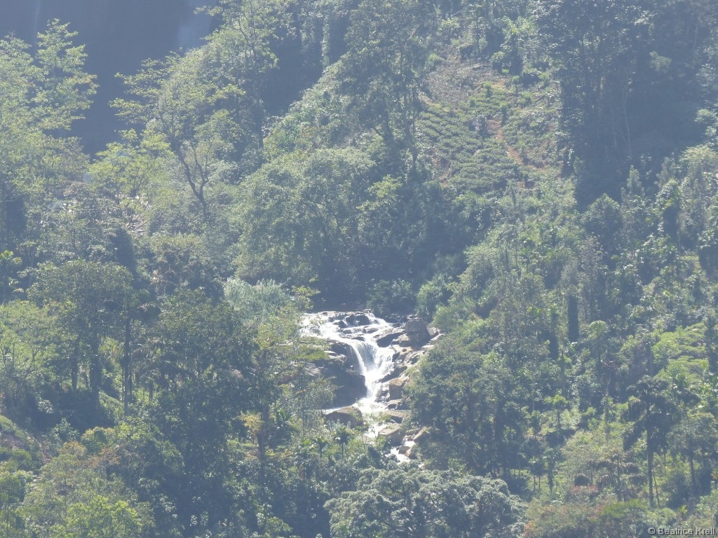 Zahlreiche kleine Wasserfälle säumten unseren Weg.