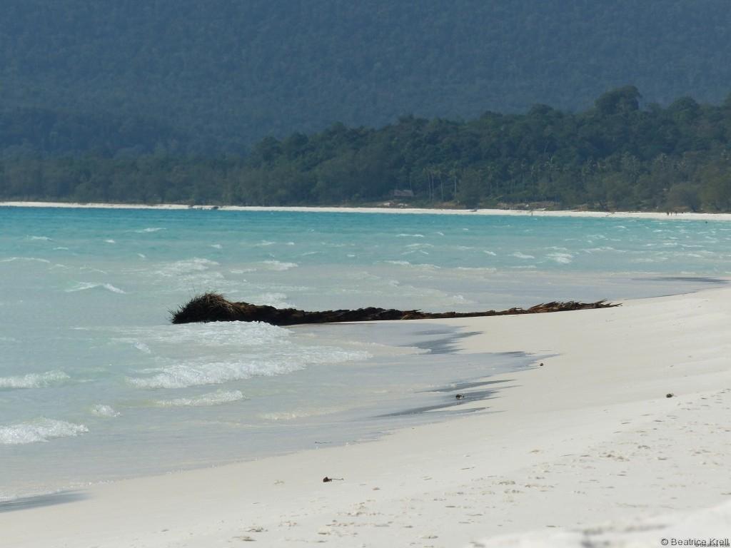Das Innere der Insel ist bewachsen mit üppigem Dschungel.
