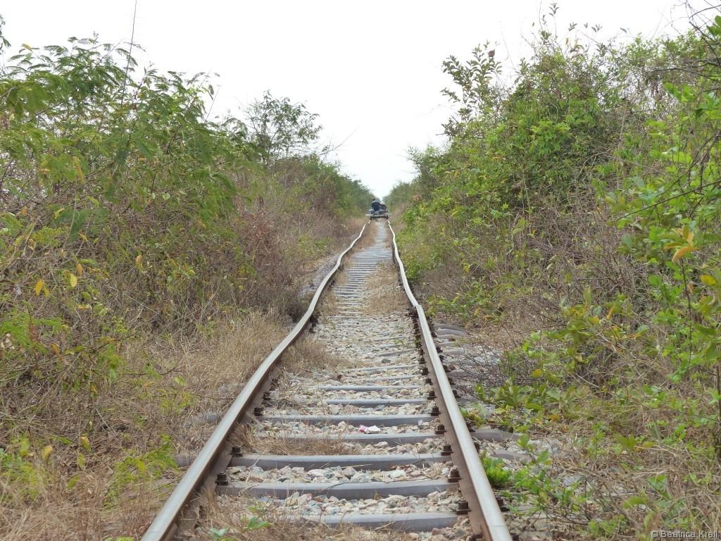 Die Bahnstrecke sieht nicht nur abenteuerlich aus.