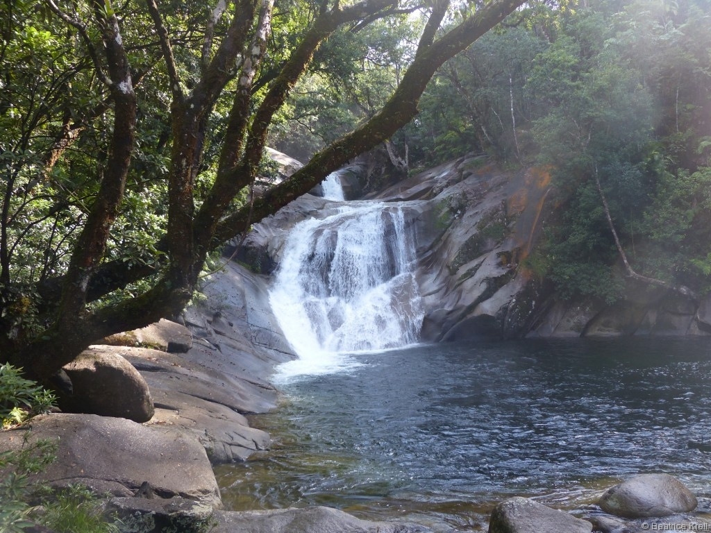 Die Josephine Falls waren wunderschön anzuschauen.