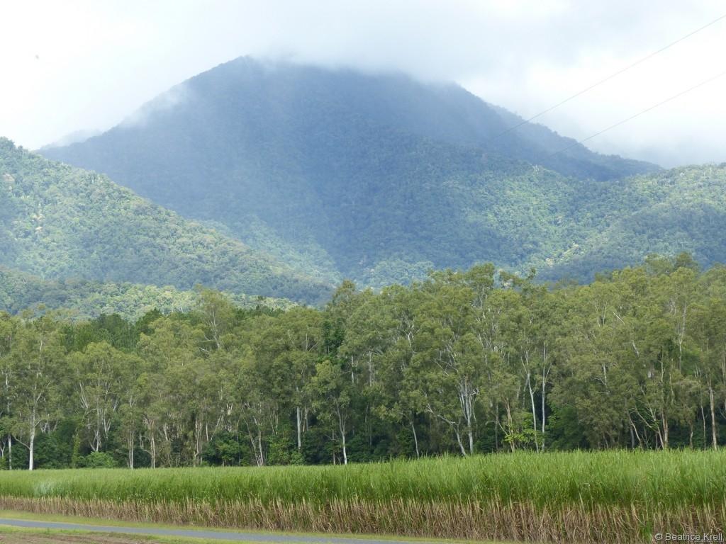 Roadtrip Richtung Süden vorbei an Zuckerrohrfeldern und wolkenverhangenen Bergen