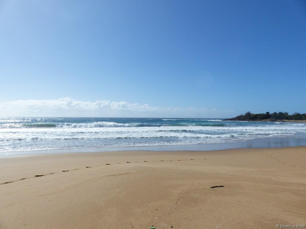 Im nahegelegenen Nationalpark von Agnes Water fand der Surfkurs statt.
